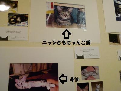 13ana5.jpg