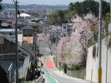 okamotosaka.jpg