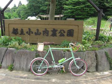 yokoyama9.jpg