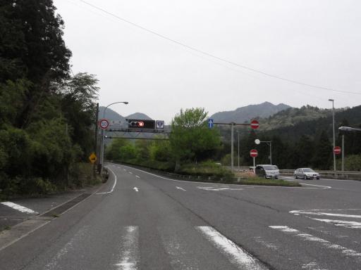 DSC03808s.jpg