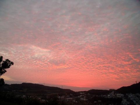 朝の空.2012年11月8日