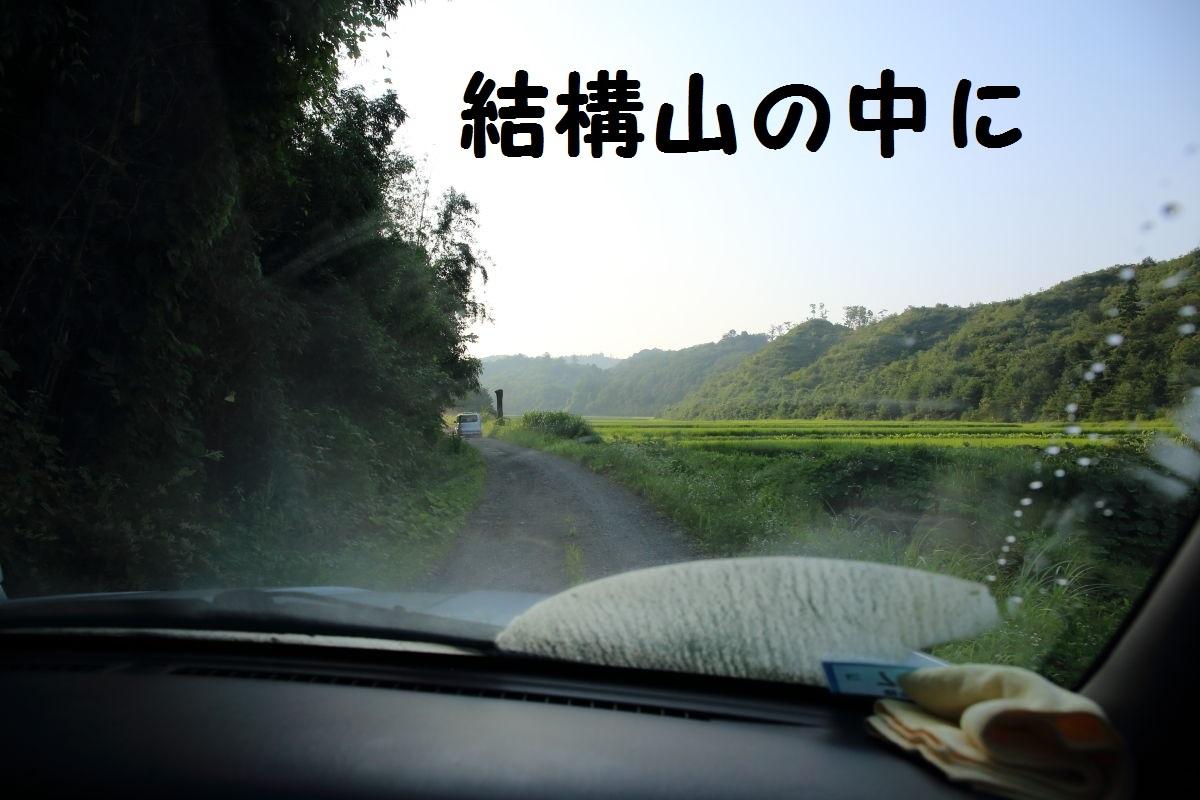 2_20130815210037322.jpg