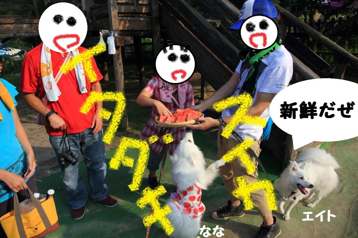 4_201309262108226df.jpg