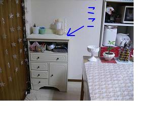 snap_124conchst_20135013337.jpg