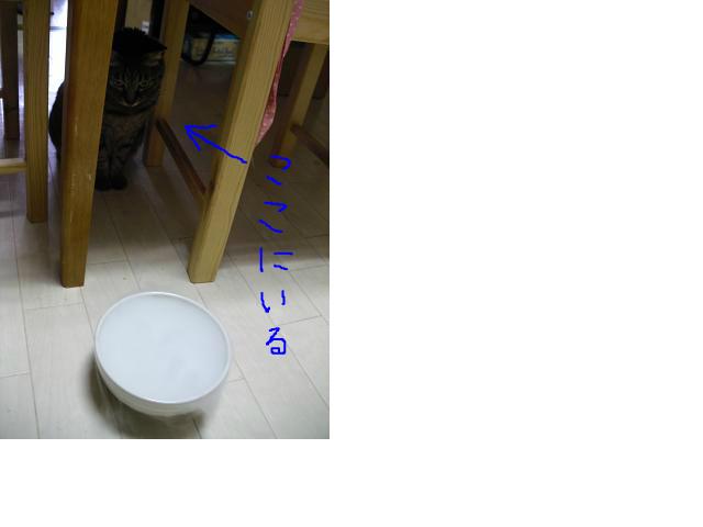 snap_124conchst_20135114460.jpg