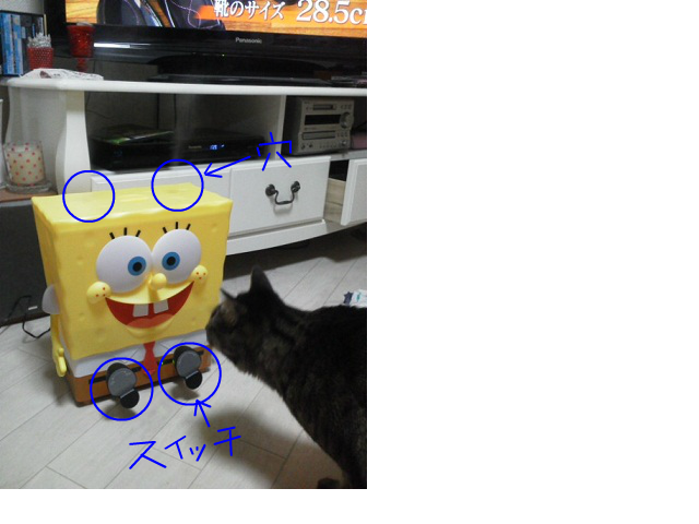 snap_124conchst_201353123135.jpg