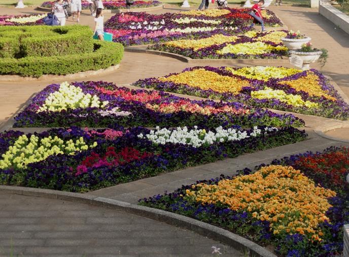 20130505 緑化都市植物園 花壇 2 A