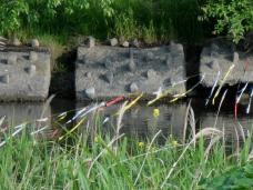 20130512 魚道.2