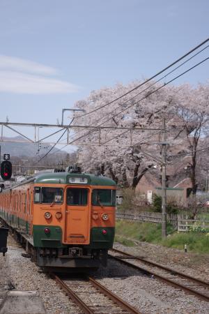 吾妻線中之条駅 115系