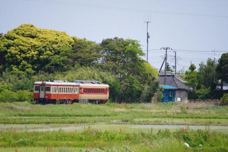 いすみ鉄道 キハ52・28