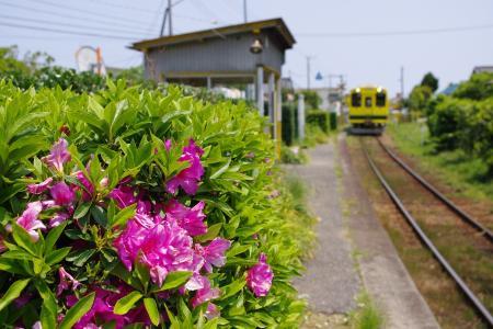 いすみ鉄道 西大原駅