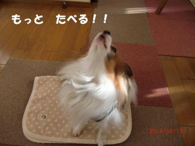 039_convert_20141218150115.jpg