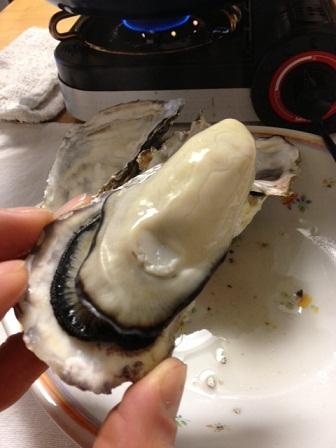 2013.2.27 牡蠣4
