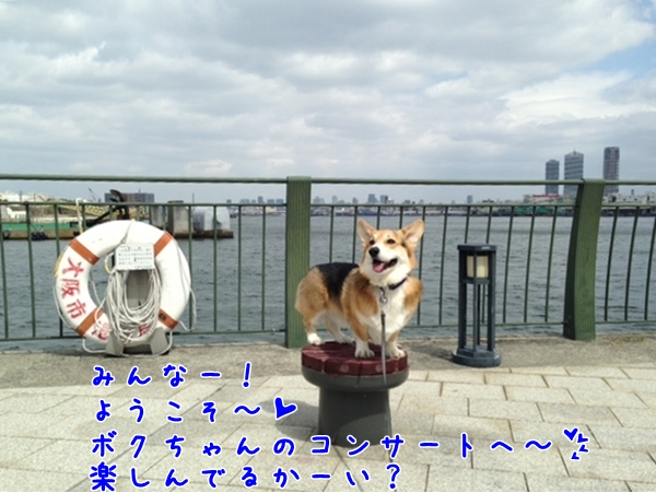写真[1] (3)