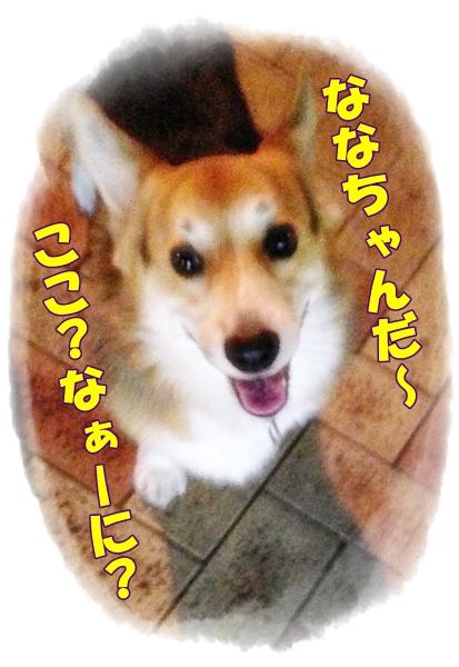 3_20131003185302fab.jpg