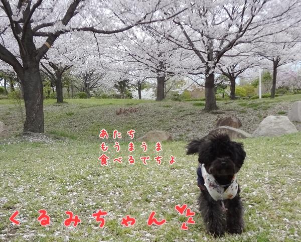 6_20130410140226.jpg