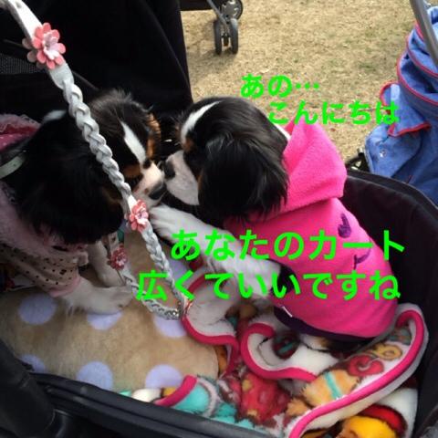 fc2blog_20141208121852973.jpg