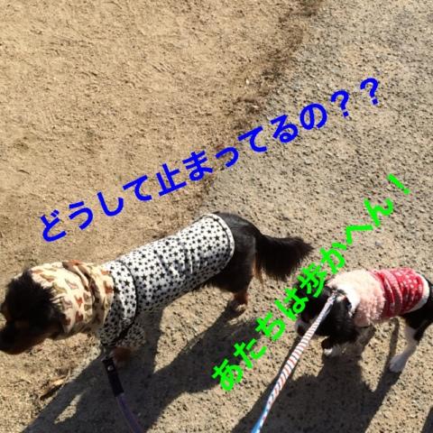 fc2blog_201412100626492d5.jpg
