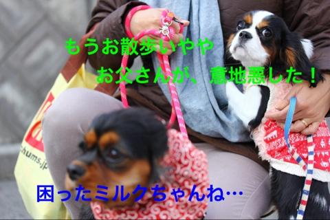fc2blog_20141221215447b7c.jpg