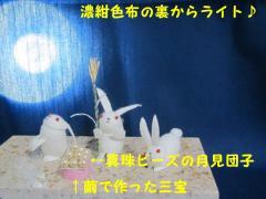 十五夜うさぎ (6)