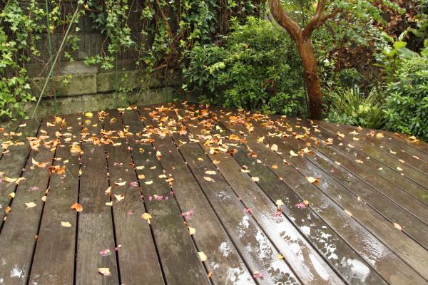 IMG_2018雨の日雨の日
