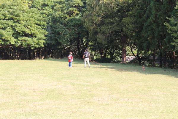 IMG_2282根岸森林公園根岸森林公園