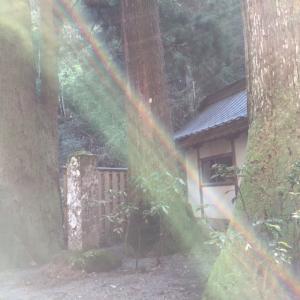 小田原大雄山3_convert_20141205204236