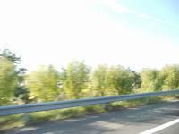 DSCN9539m.jpg