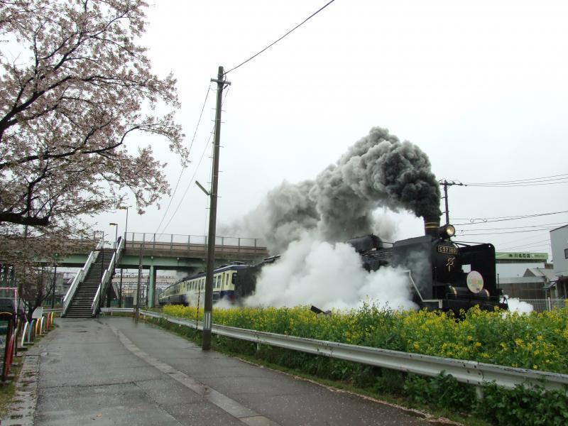 2013/04/21 磐越西線(新津-東新津)新津場内
