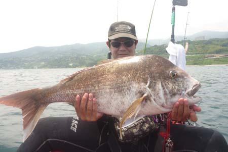75cm鯛