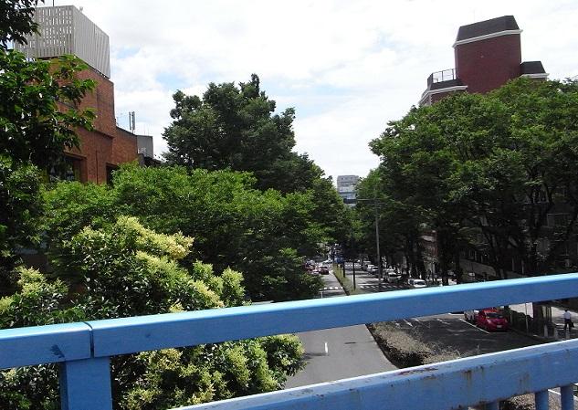 原宿歩道橋