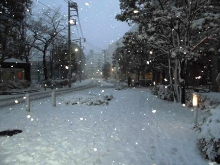 雪、夕方1