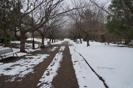 葛西臨海公園1