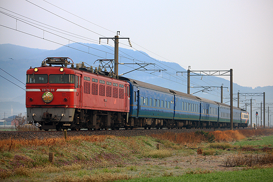 2L6G8577-2008311.jpg