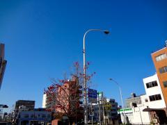 yamashita1201.jpg