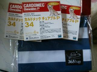 CA9053X2.jpg