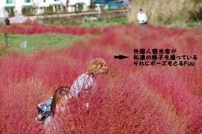 2_convert_20131106171047.jpg