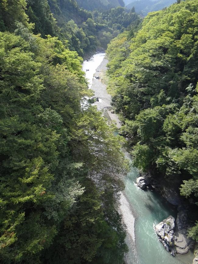 x 多摩川