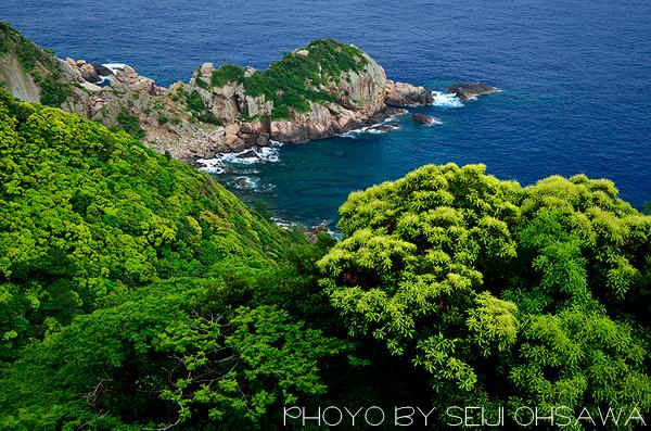 ohsawa_0605.jpg