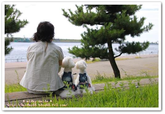 IMG_6482_20120902154212.jpeg