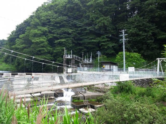 福沢ダムの吊橋 (3)