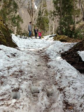 すごい雪道に