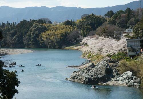 桜淵ボート