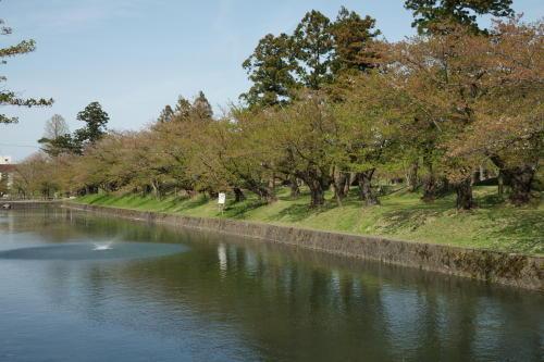 鶴岡公園1