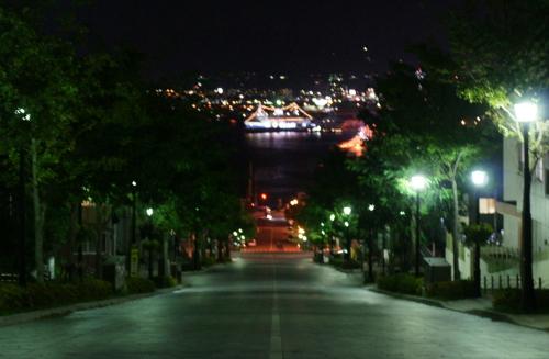 函館夜景5-1