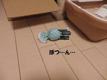 P3234739.jpg