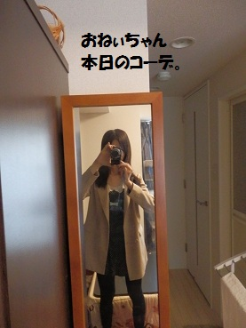 P4105004.jpg