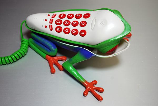 フロッグフォン?