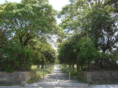 20120521_公園