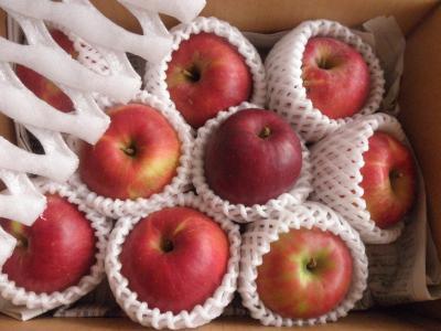 堀川さん りんご